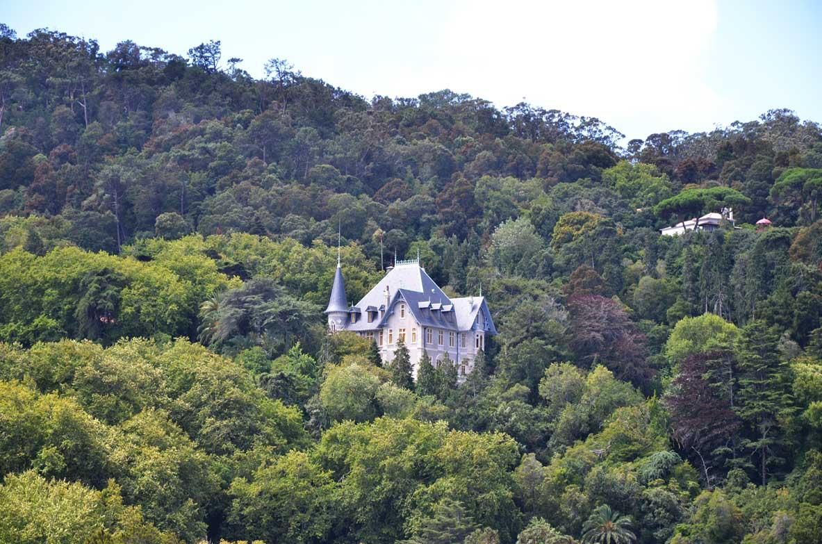 visitare sintra, palazzo nel mezzo della foresta