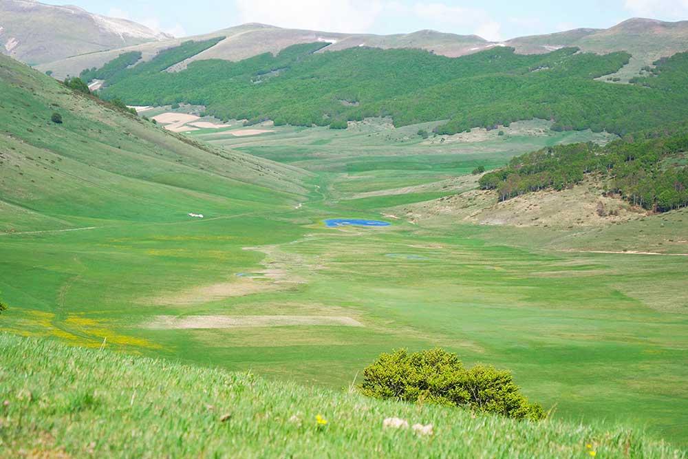 Viaggi ed ecologia: 5 soluzioni per ridurre l'inquinamento e godersi le vacanze