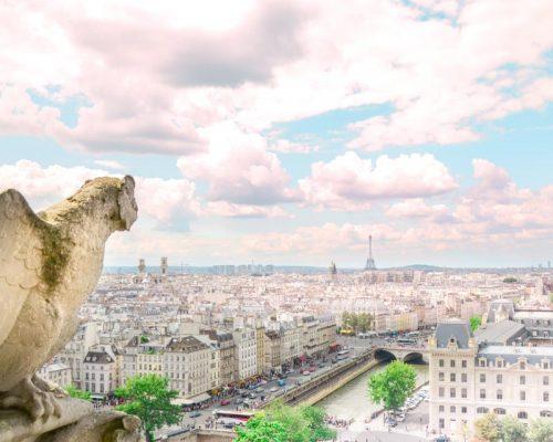 visuale di parigi da notre dame